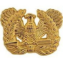 Eagle Emblems P14095 Pin-Army, Warrant Officer Candidate/Woc (1