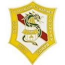 Eagle Emblems P14209 Pin-Usmc, 001St Bn 4Th Mar God Duty Country (1