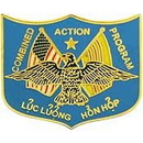 Eagle Emblems P15107 Pin-Viet, Combined Act.Prg (Usmc) (1