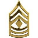 Eagle Emblems P15256 Rank-Army, E8, 1St Sgt (Gld) (1