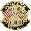 Eagle Emblems P15515 Pin-Dest.Storm, Veteran (1