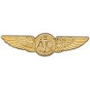 Eagle Emblems P16076 Wing-Usn, Aircrew, Gold (2-3/4