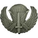 Eagle Emblems P16449 Wing-Spec, Airborne, Pwt (1-3/4