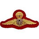 Eagle Emblems P40019 Wing-Thailand, Jump (3-5/8