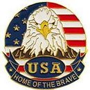 Eagle Emblems P62563 Pin-Usa, Flag, Eagle, Circle (1