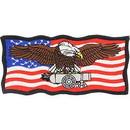 Eagle Emblems PM0219 Patch-Usa, Eagle, Cannon (4-1/2