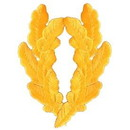Eagle Emblems PM0255 Patch-Scram.Egg, Gold (Pair) (3-3/4