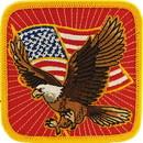 Eagle Emblems PM0369 Patch-Usa, Eagle, Flag (3