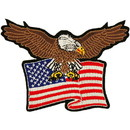 Eagle Emblems PM0805 Patch-Usa, Eagle, Flag (4-3/8