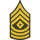 Eagle Emblems PM1009 Patch-Army, E8, 1St Sgt. (Pair) Dress Green (3