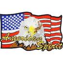 Eagle Emblems PM3066 Patch-Usa, Eagle/American (3-3/4