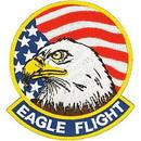 Eagle Emblems PM5254 Patch-Usaf, Eagle Flight (3-3/8