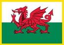 Eagle Emblems PM6120 Patch-Wales (Rectangle) (2-1/2