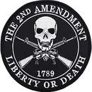 Eagle Emblems PM7103 Patch-2Nd Amendment, 1789 (5