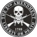 Eagle Emblems SG9019 Sign-2Nd Amendment (12
