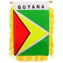 Eagle Emblems WF1041 Mini-Ban, Int, Guyana (3