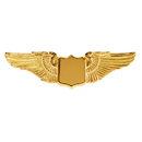 Johnson'S Jewelry WNG2-TG Med 1 1/2/Gold/Wings
