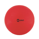 Champion Sports CHSFP65 Fitpro 65Cm Training & Exercise Ball