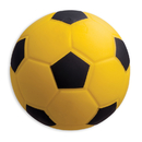 Champion Sports CHSSFC Coated High Density Foam Ball - Soccer Ball Size 4