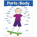 Creative Teaching Press CTP5700 Chart Parts Of The Body