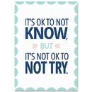 Creative Teaching Press CTP8715 It's Ok To Not Know Calm & Cool Inspire U Poster