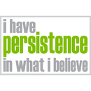 Inspired Minds ISM0020M I Have Persistence Magnet
