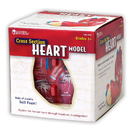 Learning Resources LER1902 Human Heart Crosssection Model