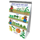 New Path Learning NP-340021 Flip Charts All About Plants Early - Childhood Science Readiness