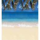 Pacon PAC56715 Fadeless 48X50 Roll Tropical Beach Boxed