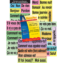 Poster Pals PSZP145R High-Freq Vocab Card Set French