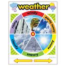Trend Enterprises T-38046 Chart Weather 17 X 22 Gr Pk-2