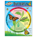 Trend Enterprises T-38151 Chart Life Cycle Of A Butterfly