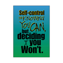 Trend Enterprises T-A63043 Poster Self-Control Is Knowing