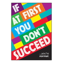 Trend Enterprises T-A67087BN (6 Ea) If At First You Dnt Succeed Poster