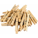 Teacher Created Resources TCR20932 Stem Basics Clothespins 50 Ct