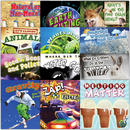 Teacher Created Resources TCR419461 My Science Library Set Of 12 Gr 2-3