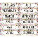Teacher Created Resources TCR8803 Confetti Monthly Headliners
