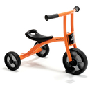 Winther WIN550 Tricycle Small Age 2-4