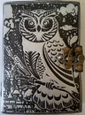 AzureGreen BBBL738 black/ silver Owl leather blank book w/ latch