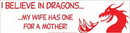 AzureGreen EBIBDR I Believe in Dragons