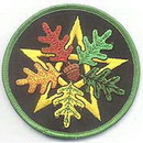 AzureGreen ESOAK Oak Leaf Pentagram iron-on patch 3