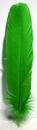 AzureGreen RFGRE Green feather