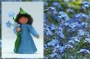 Eco Flower Fairies Forget-Me-Not Fairy (standing felt doll, holding flower)