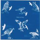 THE PRINTED IMAGE 104107 Birds Of Prey Bandana