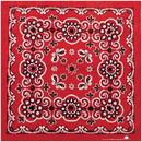 Texas Paisley Bandana Red