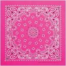 Neon Paisley Bandana Pink
