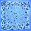 CAROLINA MANUF B22PAI-000368 UPC Bandana Cham.Blue W/Hng Tg/Upc