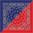 Split Paisley Navy/Red