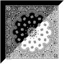 Split Paisley Black/White