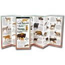 Earth Sky+Water Mammals Of Rockies Guide, 524524